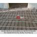 Šildomų grindų elektrinis kilimėlis 8 m2  Danfoss ECTemp150 T, 220/230V, 088L0211